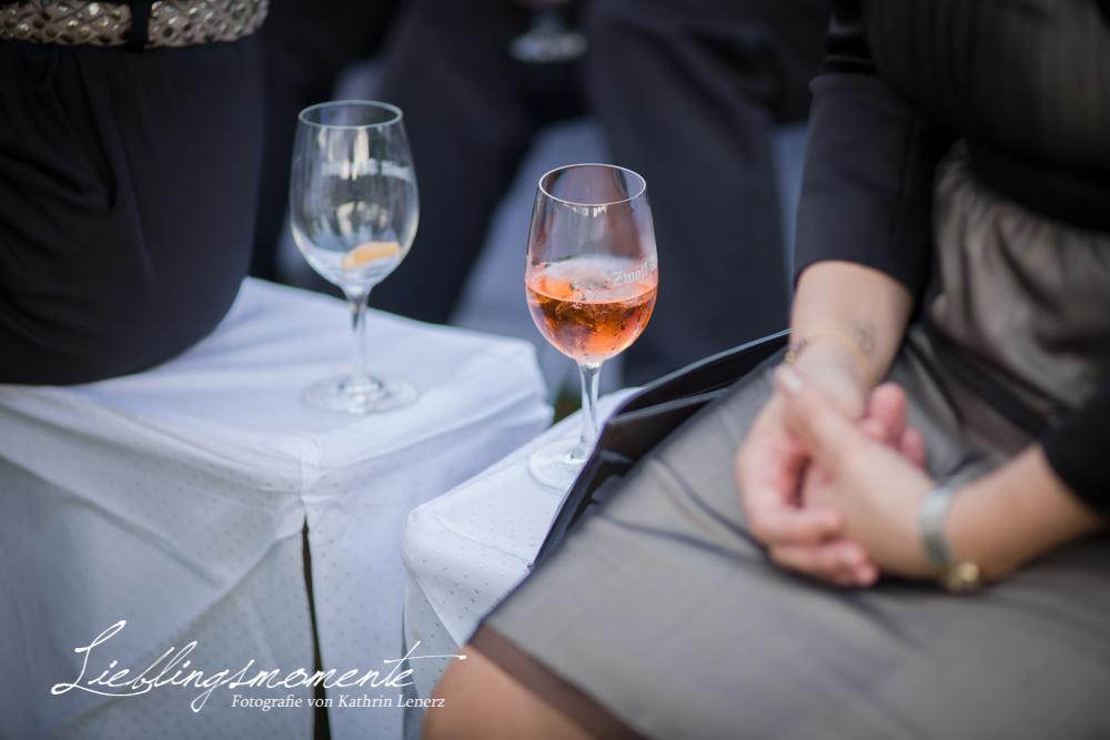 Hochzeit Stein (278)