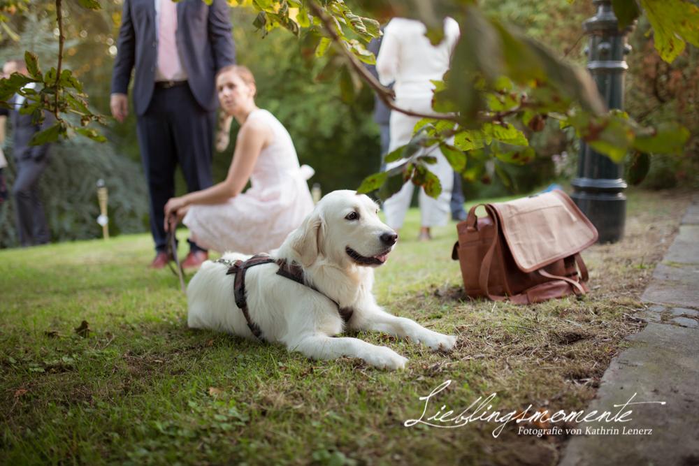 Hochzeitsfotograf_ratingen_mettmann (149)
