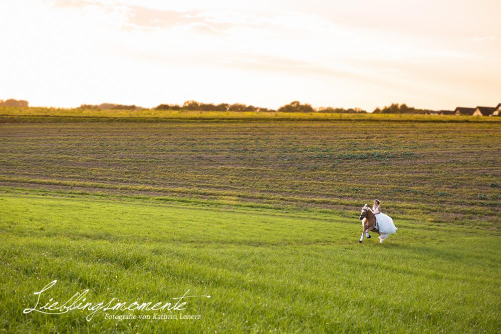 Hochzeit_pferd_ratingen_duesseldorf_fotograf (15)
