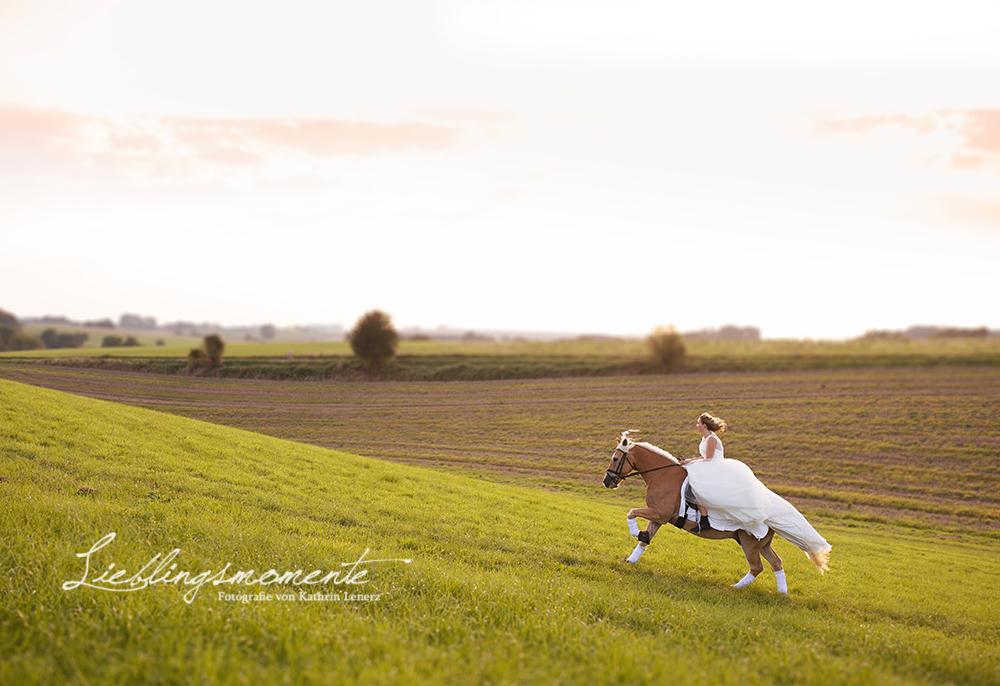 Hochzeit_pferd_ratingen_duesseldorf_fotograf (16)